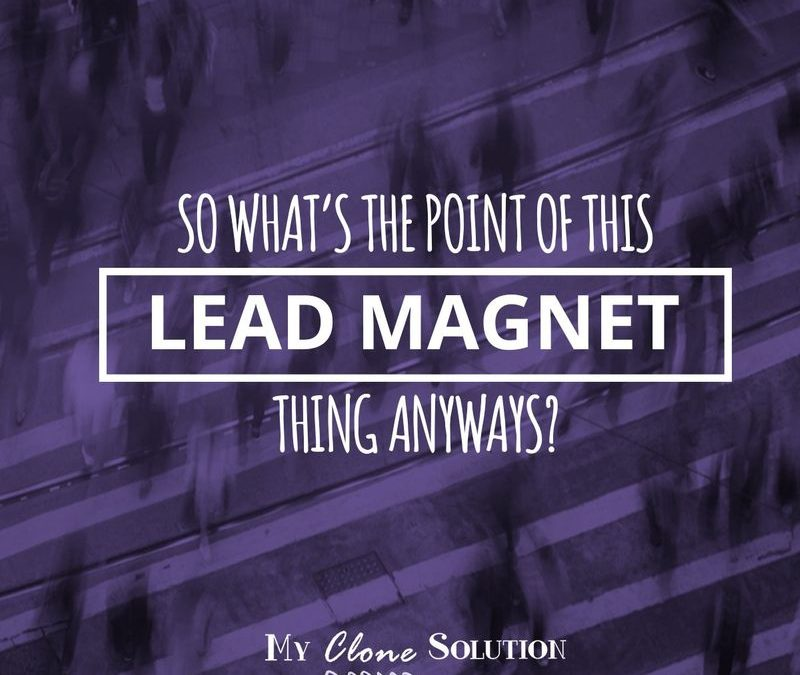 So What's the Point Of This Lead Magnet Thing Anyways?